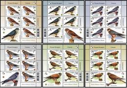 Belarus 2021 Set 6 Sheets MNH Falcons Of The Series Birds Of Belarus Falcon Bird Oiseaux Oiseau - Eagles & Birds Of Prey