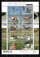 Nederland NVPH 3401-10 V3401-10 Vel Griend Vogels Van Het Wad 2016 Postfris MNH Netherlands Birds Fauna - Ongebruikt
