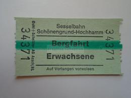 DT007   Switzerland -  Sesselbahn Schönengrund-Hochhamm - Bergstation  - Bergfahrt - Ticket  Ca 1960-80 - Andere