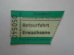 DT007   Switzerland -  Sesselbahn Schönengrund-Hochhamm - Bergstation  - Retourfahrt Erwachsene   Ticket  Ca 1960-80 - Andere