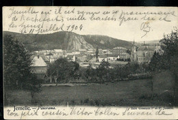 CP ( Jemelle : Panorama ) Obl. : ARLON - BRUXELLES  11/07/1904 Pour Genval - Ambulants