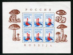 SALE  Russia 1995 Local Post  Mushrooms  MNH - Mushrooms
