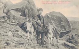 K24 - RUSSIE - Type Du Caucase - Persan Avec âne Et Mulet - Russie