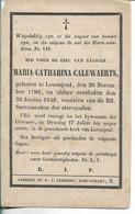 Maria Caluwaerts Lovenjoul 1849 - Religion & Esotericism
