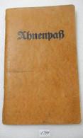 WW2 German Ahnenpass - Documentos