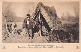 Romania - JILAVA - Shepherd In Front Of His Hut - Ed. König-Karol Verlag - Rumania