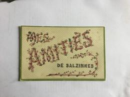 NAMUR / SALZINNES   MES AMITIES DE SALZINNES - Namur