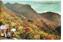 65249 Japan,  Card Circuled 1938 As 2 Scan - Osaka