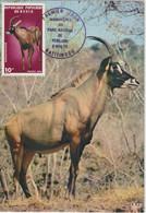 Bénin Carte Maximum 1976 Hippotrague 373 - Benin – Dahomey (1960-...)