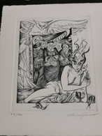 Ex-libris Luxembourg, Pierre Roller 18x14 - Ex Libris