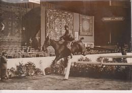 PARIS 1932 CONCOURS HIPPIQUE GRAND PALAIS  17*12CM CHEVAUX HORSE HIPPIC HIPPIQUE - Sport