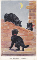 The Eternal Triangle Cats On Roof Fighting Antique Comic Postcard - Gatti