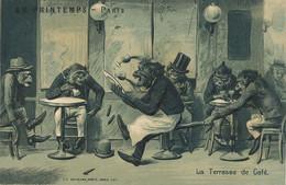 Embossed Human Monkeys Kunzli  Singe Humain Terrasse De Café Gaufrée Serveur Humour Au Printemps Magasin - Singes