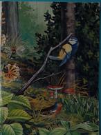 Petit Calendrier Poche 1993  Oiseau Mésange Champignon Amanite  Muguet - Illustration Crozat - Formato Piccolo : 1991-00