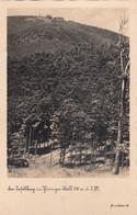 6942) Der INSELSBERG Im Thüringer Wald - ALT !! - Other