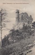 6958) Ruine TÜRKENSTURZ Bei GLEISSENFELD - SEEBENSTEIN - Alt !! 1912 + Pro Patria Marke - Autres
