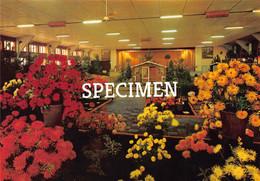 Ontspanningscentrum Deweer - Grote Feestzaal Floraliën @ Dadizele - Moorslede