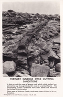 London Tertiary Igneous Dyke Cutting Sandstone London RPC Postcard - Non Classificati
