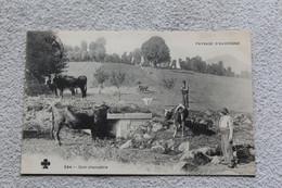 Cpa 1905, Paysage D'Auvergne, Coin Champêtre, Puy De Dôme 63 - Zonder Classificatie