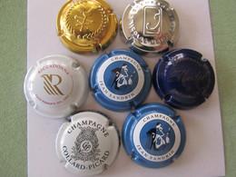 Colle Ction De 7 Capsules - Sandrin Les Madeleines - Collard Picard - Riccadonna - Sandrin - Maillart - Medot - Sandrin - Colecciones