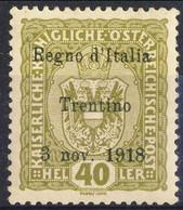 Trentino 1918 Sas. N. 10 H 40 Oliva **MNH Cat. € 240 Firmato A. Diena. G. Oliva, + Timbri Garanzia - Trentino