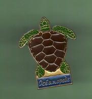 TORTUE *** OCEANOPOLIS *** 5003 (3-2) - Animals