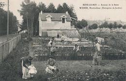 Bois Le Roi Avenue De La Seine Weber Horticulteur Entreprise De Jardins - Bois Le Roi