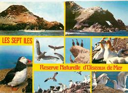 CPSM L'Ile Rouzic-Les Sept Iles-Multivues-Beau Timbre       L752 - Unclassified