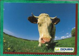 Vache Du Doubs (CDT Du Doubs 7 Avenue De La Gare D'eau à Besançon Atelier Michel Bevalot) 2scans - Cows