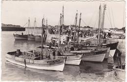 ST-GILLES CROIX De VIE : Port ,Arrivée Des Bateaux - Saint Gilles Croix De Vie