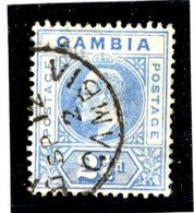48880 - 1 TP - Gambia (...-1964)