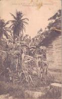 GABON - ENVIRONS LIBREVILLE / VEGETATION AFRICAINE - Gabon