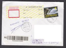 NORTH MACEDONIA, 2021, R-COVER, # 958- FAUNA-Cygnus Olor, Birds, Europa + - Swans