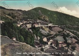 CARTOLINA  PASSO DELLA COLINA,PISTOIA,TOSCANA,SULLA PORRETTANA M.932-BAR OLGA,MONTAGNA,BELLA ITALIA,VIAGGIATA 1958 - Pistoia