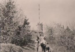Brotterode - Aufgang Zum Inselsberg - Ca. 1975 - Schmalkalden