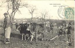 NOS CAMPAGNES -2499- Le Hersage - Ed. Trèfle à 4 Feuilles - Wagengespanne