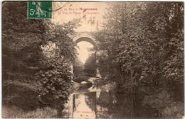 61thks 37 CPA - PARC DE MAINTENON - LE PONT DE PIERRE ET L'ACQUEDUC - Maintenon