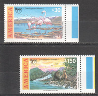 YY1118 1990 CHILE ANIMALS & FAUNA BIRDS FLAMINGO AMERICA UPAEP COLUMBUS SET MNH - Flamingo