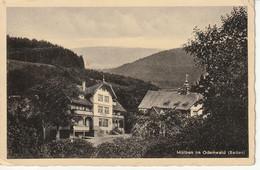 Mülben, Odenwald, Pension Reinmacher,Posthilfstelle Im Hause, Bahnpost  Ludwigshafen - Autres