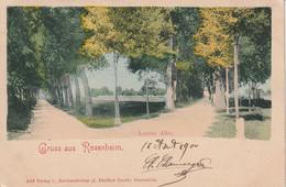 Rosenheim , Loretto Allee  1900 - Rosenheim