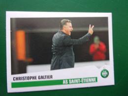 PANINI Foot 2013-14 N°392 AS Saint-Etienne Christophe Galtier - Französische Ausgabe