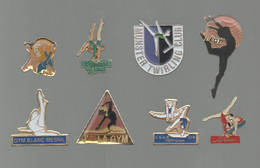 PINS PIN'S SPORTS  GYMNASTIQUE GYM TWIRLING BLANC MESNIL PERPIGNAN EGT MUNSTER LIMOURS  LOT 8 PINS - Ginnastica