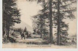 Haute Savoie Entre Chamonix Et Argentière (attelage) - Chamonix-Mont-Blanc