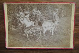 5211/Charrette Tirée Par Une Chèvre -Photo Sur Carton 16x10,5 Cm - Non Classés