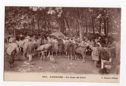 LOUHANS (SAONE & LOIRE) * JOUR DE FOIRE * éditeur F. Besson * VACHES * AGRICULTEURS * Carte N° 330 - Fiere
