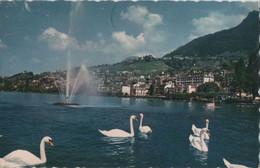 Montreux - Schweiz - Le Jet - VD Waadt