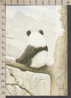 117205/ John BUTLER, Panda, From *Panda Climbs, Walker Books 1984* - Other Illustrators