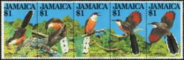 JAMAICA 1982 Jamaican Lizard Cuckoo Birds Animals Fauna MNH - Cuckoos & Turacos