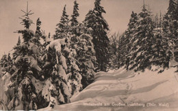 Inselsberg - Winterwald - Other