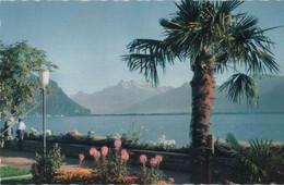 Schweiz - Chillon - Montreux, Quai - Ca. 1970 - VD Waadt